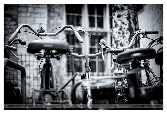 Bikes in the city